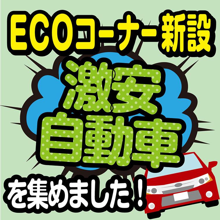 【ECO価格コーナー】お値打ち車両大集合